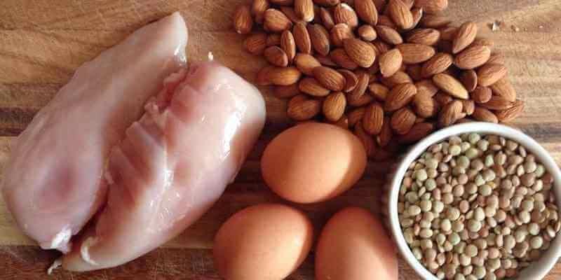 alimento rico en proteínas