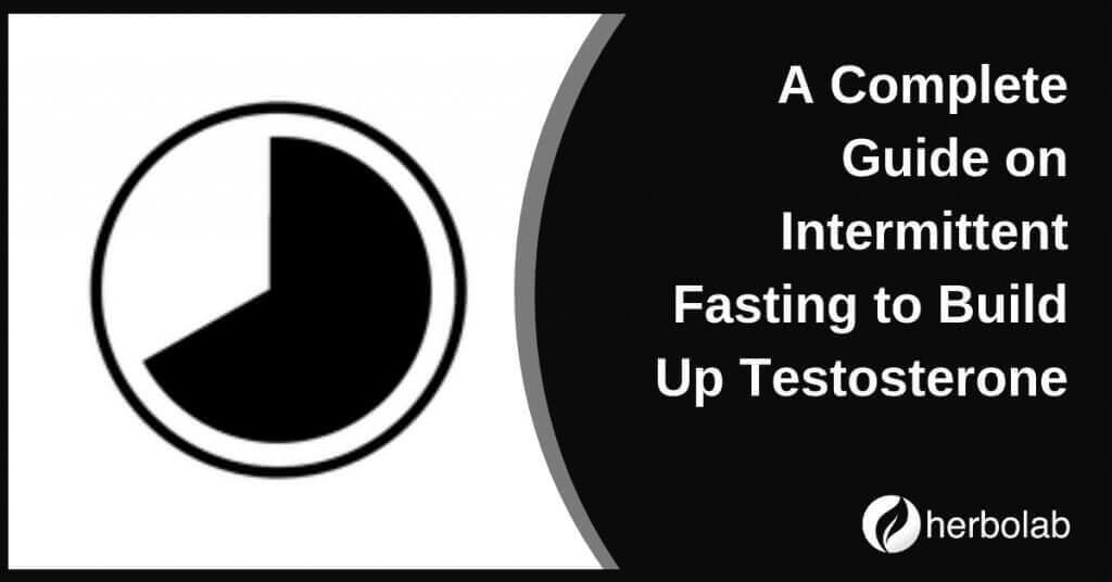 A Complete Guide on Intermittent Fasting to Build Up Testosterone