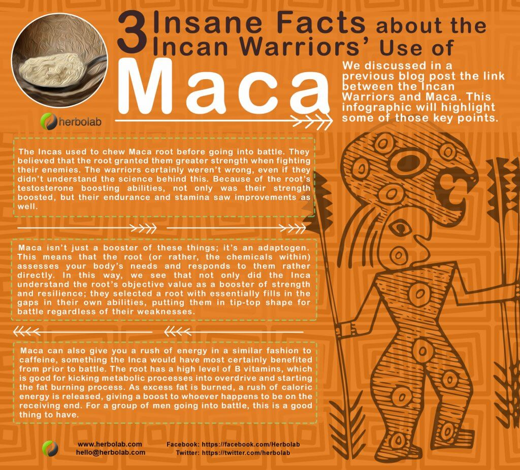Maca Uses by Incan Warriors