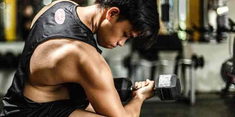 tribulus for muscle strength