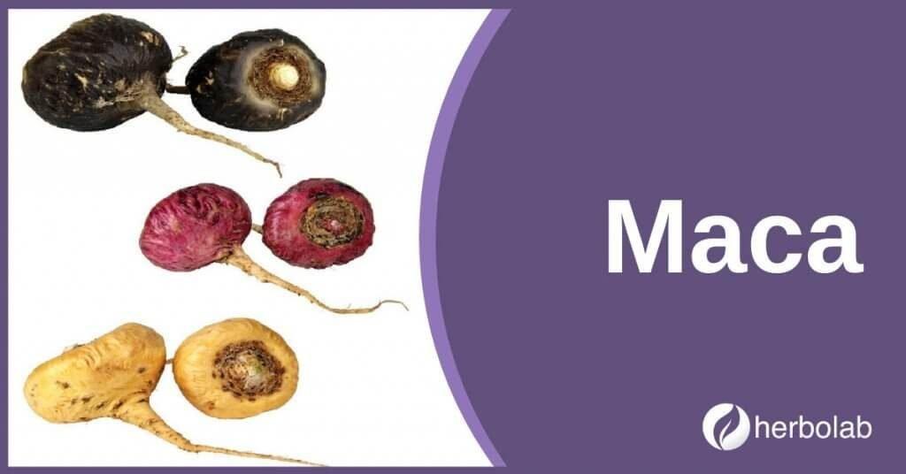 maca-supplement