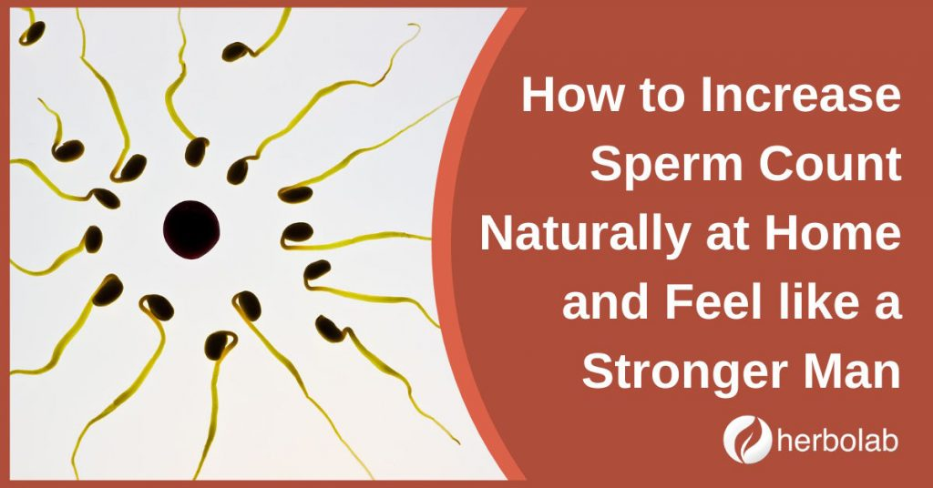 How to Increase Sperm Count Naturally at Home and Feel like a Stronger Man